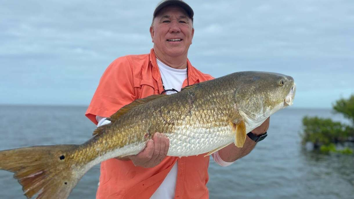 A picture of Big Redfish And Inshore Grouper with Crystal River Fishing Charters